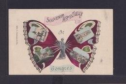 Ansichtskarte Tongeren Belgien Souvenir Karte Schmetterling Insekten - Belgien