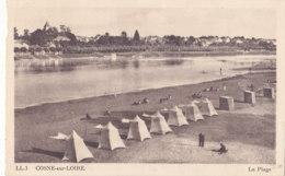 Cosne Sur Loire (58) - La Plage - France