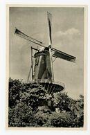 D450 - Woerden Korenmolen - Molen - Moulin - Mill - Mühle - - Woerden