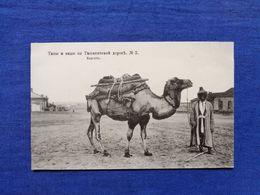 Tashkent Road Types Camel Kirghiz - Turkmenistan