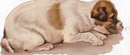 4 GRANDS ET  BEAUX DECOUPIS CHIOT / CHIEN / 12X5 - Animals