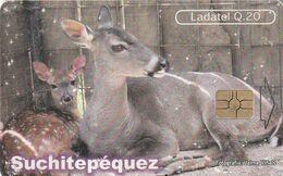 GUATEMALA, Suchitepequez - TIERRA DE VENADOS. GT-TLG-0183. (040) REGULAR. - Guatemala