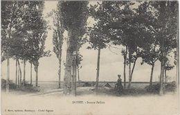 03   Doyet   Source Pallois - Otros Municipios