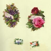 4 Découpis BOUQUET FLEURS A MESSAGE Ne M'oubliez Pas, Souvenir D'amitié, Cueillies Pour Vous, Amitiés Sinc Dos Vierge 52 - Flowers