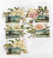 5 PETITS Découpis PLAQUE FLEURS PAYSAGES  Dos Vierge 72 - Flowers
