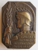 Insigne Boutonnière Congrès Technique International Paris 1946, Par Cochet - Other
