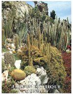 (J 4) Monaco - Exotic Garden - With French St Dié Stamp - 1998 (posted To Romorantin) - Sukkulenten