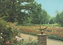 Wörlitz Landschaftspark - Sonnenuhr - Ca. 1965 - Woerlitz