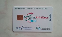 JOLIE CARTE A PUCE CEV / CARTAPLUS VILLE : DIEPPE T.B.E !!! - Frankreich