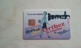 JOLIE CARTE A PUCE CEV / CARTAPLUS VILLE : ORTHEZ T.B.E !!! - Frankreich