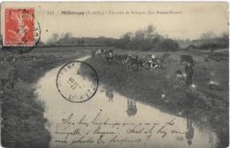D41 - MILLANCAY - UN COIN DE SOLOGNE (LA BONNE HEURE) - Homme-Chien-Chèvres-Vaches Près De L'eau - France