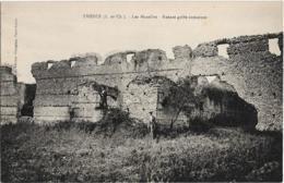 D41 - THESEE - LES MAZELLES - RUINES GALLO ROMAINES - Homme Devant Les Ruines - France