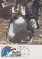 Carte  Maximum  1er  Jour    TAAF    Gorfou  Macaroni    1987 - Pinguine