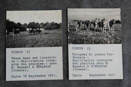 Benassay Deux Photos Exploitation Russeil En 1951 002CP06 - Berufe