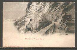 Carte P ( Brunnen Von  Der Axenstrasse ) - SZ Schwyz