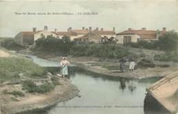 DANS LES MARAIS SALANTS DES SABLES D'OLONNE LA GARLIERE - Sables D'Olonne