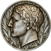 Maroc, Médaille, Empire Chérifien, Comité Des Sports, Vernon, SUP+, Silvered - Tokens & Medals