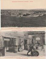 2 CPA:LA VIGNE EN CHAMPAGNE (51) VIGNOBLE D'AY 1er CRU RAISINS NOIRS,VENDANGES EN CHAMPAGNE VENDANGEOIR MAISON POMMERY - Vines