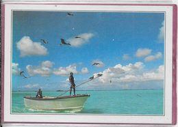 SEYCHELLES  - Albadra Le Lagon - Seychelles