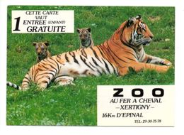 XERTIGNY - Zoo - Tigre - Tigers