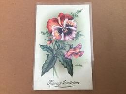 Illustrateur Lor-toy, Fleur Pensée - Illustratori & Fotografie