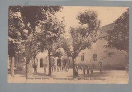 CP - 21 - Châtillon-sur-Seine - Collège Désiré Nisard - Une Cour De Récréation - Chatillon Sur Seine