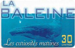 French Polynesia - OPT - Les Curiosités Marines La Baleine - 10.2001, Gem1A Symmetric Red, 30Units, 50.000ex, Used - Polinesia Francese