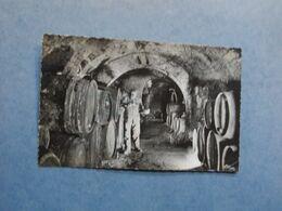 IRANCY  -  89  -  Grands Vins Rouges  -  Dégustation Au Cellier  -  Yonne - France