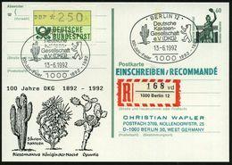 1000 BERLIN 12/ Deutsche/ Kakteen-/ Gesellschaft/ ..(DKG)/ 100 Jahr-Feier 1992 (13.6.) SSt = Riesen-Säulenkaktus (u. Bär - Sukkulenten