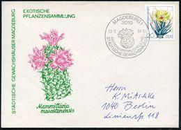3010 MAGDEBURG 1/ ..STÄDTISCHE GEWÄCHSHÄUSER 1984 (19.2.) SSt = Ingel-Kaktus Auf EF 20 Pf. Prismenkaktus, Inl.-SU. (Mi.2 - Sukkulenten