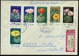 D.D.R. 1974 Kakteen II, Kompl.Satz + RZ: 25 Rostock 3/bc , Sauber Gest. BRD-Fern--R-Bf. (Mi.1922/27) - KAKTEEN / SUKKULE - Sukkulenten