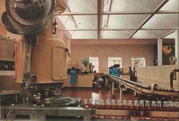 Italien - Santa Vittoria D'Alba - Stabilimento Cinzano - Ca. 1980 - Cuneo