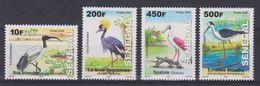SENEGAL 2009 BIRDS - Non Classificati