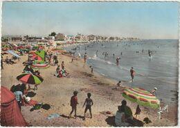 Palavas-les-Flots -(D.8471) - Palavas Les Flots