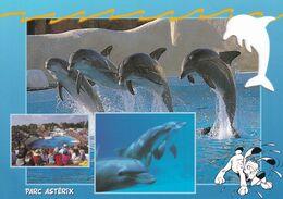 """.. DAUPHIN   """" Parc Astérix """" Idéfix ... - Delfines"""