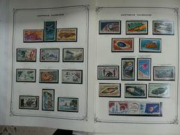 Nouvelle Calédonie Poste Aérienne  Complète (sauf 1) Entre 1948 Et 1996   Neufs Sans Charnière MNH - Ongebruikt