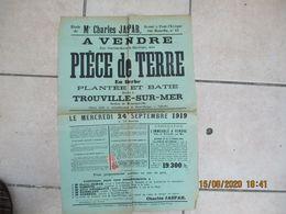 TROUVILLE SUR MER LE 24 SEPTEMBRE 1919 A VENDRE PIECE DE TERRE EN HERBE PLANTEE ET BATIE SECTION DE HENNEQUEVILLE 62/43c - Plakate