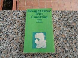 Hermann Hesse - Peter Camenzind - School Books