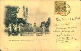 1904, Picture Postcard (Entre Du Jard Des Pamplemousses) Franked With 24 Cents Coat Of Arms. - Mauritius (...-1967)