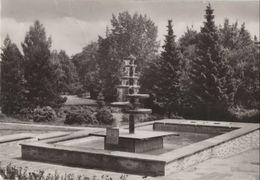 Bad Klosterlausnitz - Im Kurpark - Ca. 1985 - Bad Klosterlausnitz
