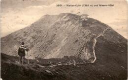 Niesen-Kulm Mit Niesen-Hotel (5919) * 4. 9. 1909 - BE Berne