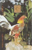 Nº 009 TARJETA DE CUBA DEL GALLO FINO (COQ) - Kuba
