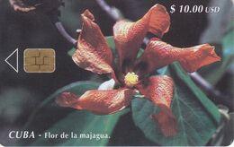Nº 037 TARJETA DE CUBA DE LA FLOR DE LA MAJAGUA (1ª EMISION) FLOWER - Kuba