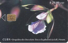 Nº 038 TARJETA DE CUBA DE UNA ORQUIDEA DE CHOCOLATE (RARA) (ORCHID-FLOWER) - Kuba