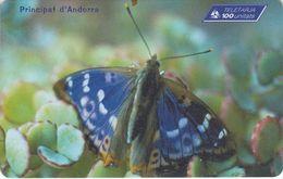 AND106 - Papillon N° 5 : Apatura Iris - Andorra