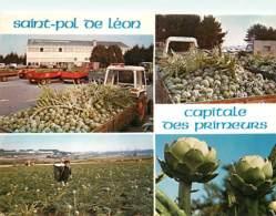 Recettes De Cuisine - Saint Pol De Léon - Le Marché Aux Légumes à La S.I.C.A. Et Les Champs D'artichauts - Multivues - C - Ricette Di Cucina