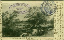KENYA - KEDONG RIVER -  PHOTO YOUNG - POSTMARK AUSTRIAN LLOYD'S MOMBASA AGENCY - STAMP -  MAILED 1902 ( BG9780) - Kenia