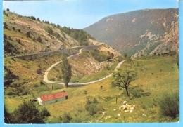 Escragnolles (Grasse-Alpes-Maritimes)-1972-La Route Napoléon Près D'Escragnolles Entre Grasse Et Castellane(04) - Grasse