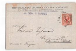 17902 PADOVA SINDACATO AGRICOLO PADOVANO X CAMPOCROCE DI MIRANO VENETO - Marcofilía