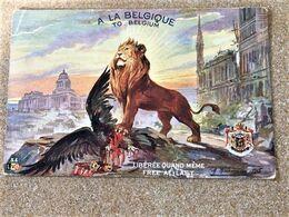Oude KLEUR Postkaart Dd 13/1/1917 Van Frontsoldaat Maurice De Corte Aan Zijn Zus In Sèvres Les Enfants De L'Yser - Sevres